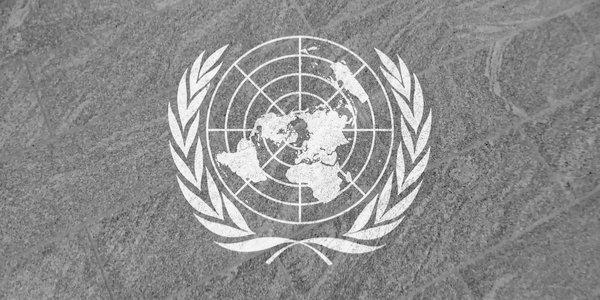 Die UN, Covid und der Klimawandel – Teil 1
